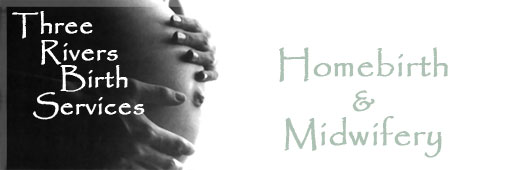 New Birth Experiences ~ Homebirth & Midwifery
